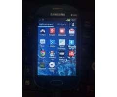 Samsung Fame 8gb en Puyo
